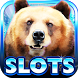 Slot Machine : Bear Slots by R&M Studio