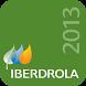 Iberdrola 2013 by Iberdrola S.A.