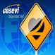 Consulta Conductor Cosevi by Desarrollo de aplicaciones Moviles Para Negocios