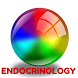 Endocrinology-Latest News by MMI