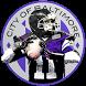 Baltimore Football Ravens Edition