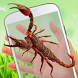 Scorpion on hand scary prank by Owgun Entertainment