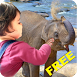 Kids wildlife zoo - learn&play