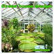 Best Green house inspiration by karisma