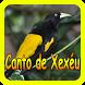 Canto de Xexéu by takumidev