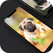 Pug Wallpapers 2017 Lock Screen by Wiborg Layla