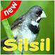 Canto de Coleiro Silsil Complete Mp3 by canto de app