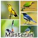 Top 1000 Master Burung Lengkap by Detarp Creative