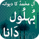 Behlool Dana (بُہلُول دَانا) by Oasis Solutions