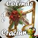 Radio Colinde de Craciun by Turbo Frog Apps