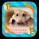 Funny Hamster So Cute by PoPoMeda