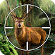Deer, Bear, Tiger Hunting 2016 by MQGames