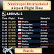 Simferopol Airport Flight Time