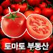 송파석촌공인 by NORIAPP