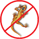 Anti Lizard Repellent by CodesLogic