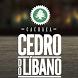 Cachaça Cedro do Líbano by © 2014 por Fazenda Libanus Agroindustria Ltda