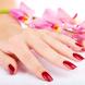 Nail Polish Art & Henna Designs