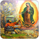 Virgin Of Guadalupe Hd by Mariorod Apps