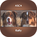 ASCA Rally Dog Obedience by Blue Ribbon Dogs