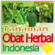 Tanaman Obat Herbal by Karina dev