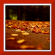 Autumn Live Wallpaper by art wallpaper