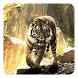 Tigers Live Wallpaper by Pro Live Wallpapers