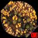 Autumn Live Wallpaper by Gasparis Wallpaper