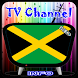 Info TV Channel Jamaica HD by Tv channel info online