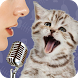 Cats translator Joke by Academy.wish