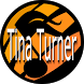 Tina Turner TOP Lyrics by rnbpop