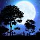 Nightfall Live Wallpaper Free by Jason Allen