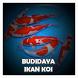 Cara Budidaya Ikan Koi by Hampala Kingdom