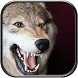 Wolf Sounds by Ringtones Studio Soft
