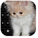 Lovely Kitty Keyboard by cool wallpaper