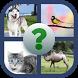تعلم أسماء الحيوانات by Soffia mouka