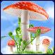 Mushroom HD Live Wallpaper by PremiumLW.com