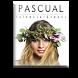 Peluquerias Pascual by igloobe.net