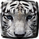 Tiger Live Wallpaper by My Live Wallpaper