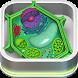 광합성 식물의 구성 : 세포 (Unreleased) by (주)자연사연구소