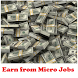 Earn from Micro Jobs by SS App Zone