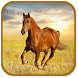 Horse Jump by Anass Rhouzlane