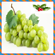 Green Fruits Onet Connect Game by Android Match Game