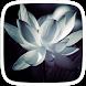 White Lily Theme by Heartful Theme