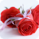 Rose Gif by wasim jaffer