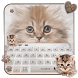 fluffy cat keyboard cute brown maine coon by Super Keyboard Theme