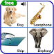 Learn English - Kids Apps by Ursa EDU