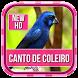 Canto De Coleiro HD Mp3 by Ganiarto Media Digital