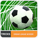 Trick Dream League Soccer 2017 by Nengsua