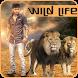 Wild Animal Photo Editor by Varnitech Infosoft