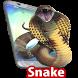 Snake On Screen -guide to snake in phonescreen app